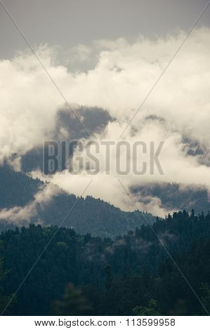 Cloudy Mountains forest beautiful landscape