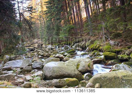 River In The Polish Forest. Mountain Rocks Covered With Moss