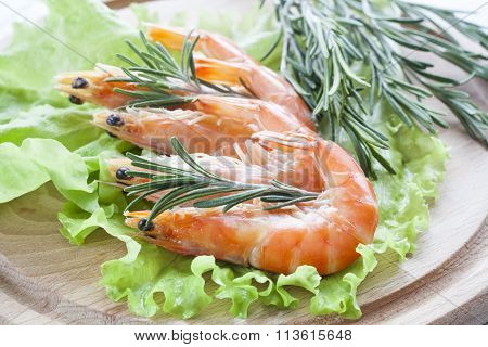 Tiger Prawn Shrimps with green lettuce and rosemary.