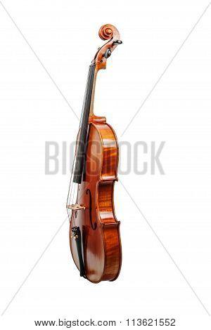 Viola classic music instrument