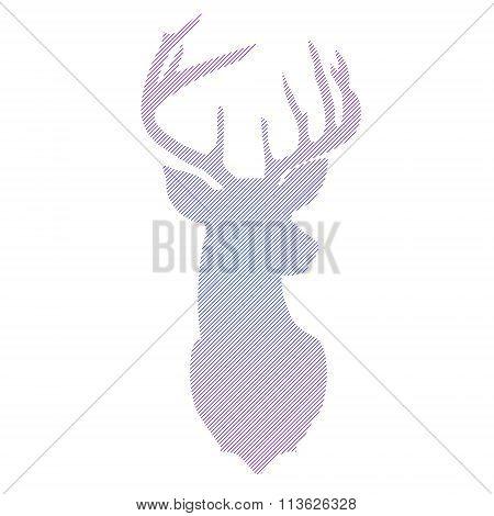 Striped Head Of Deer In Vector