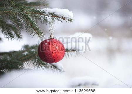 Red Christmas Bauble With Snowflakes On Snowy Pine Branch