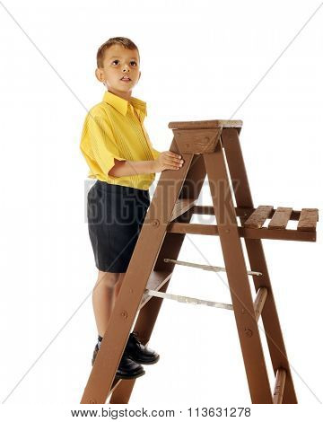 A handsome preschooler on a ladder trying to figure out how to get higher at another location.  Isolated on white.