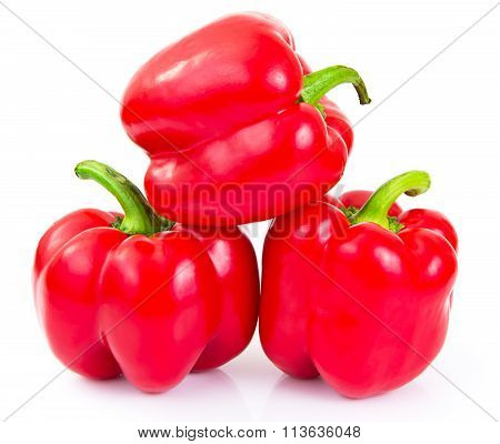 Colored Fresh Sweet Pepper Isolated on White Background.