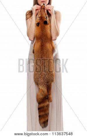 Woman Hands Holding Fox Skin