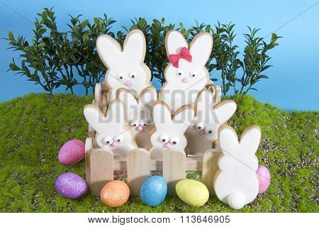 Easter bunny sugar cookies decorated sitting in box with grass and plant sky background