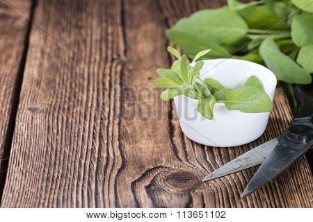 Fresh Herbs (sage)