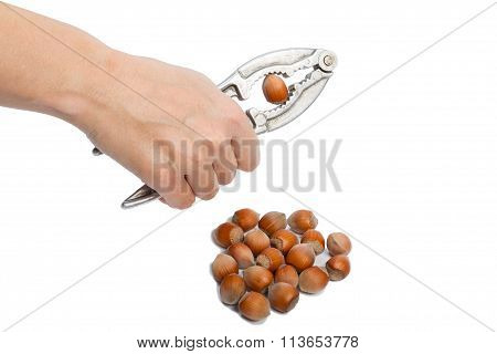 Cracking The Nut