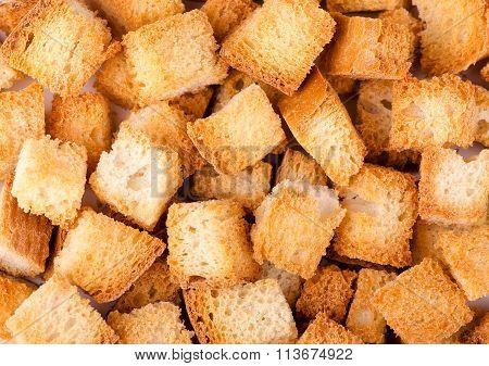 crumbs of wheat bread