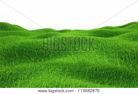 Green grass growing on hills with white background top view