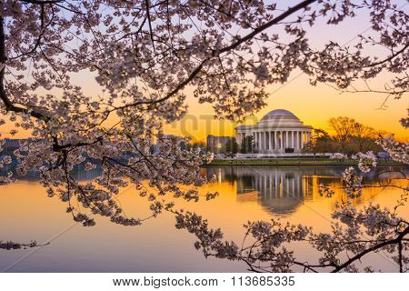 Washington, DC at the Tidal Basin and Jefferson Memorial during spring.
