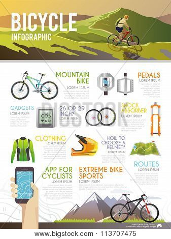 Colourful bicycle vector infographics