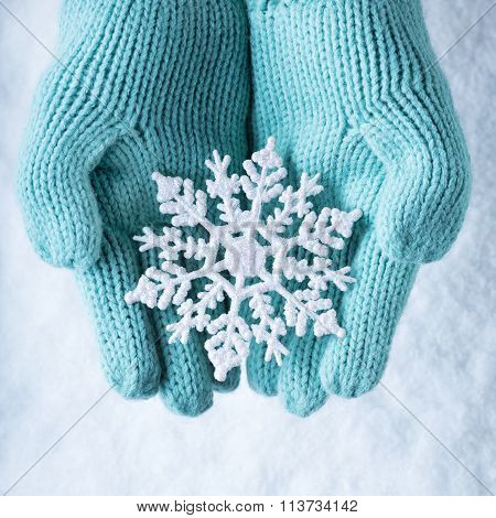 Female Hands In Light Teal Knitted Mittens With Sparkling Wonder