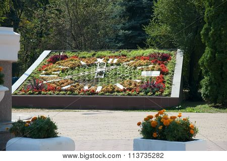 flower bed with clock