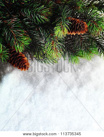 Winter Christmas Background. Christmas Boarder With Fir Tree Bra