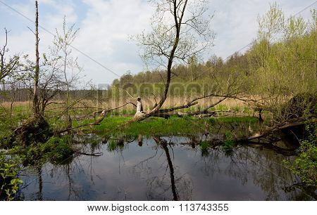 Flooded Abandoned Meadows In Springtime