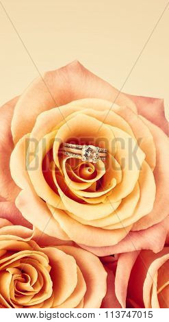 Pink Rose And Diamond Ring Nestled Inside. Bouquet Of Blossoming Roses