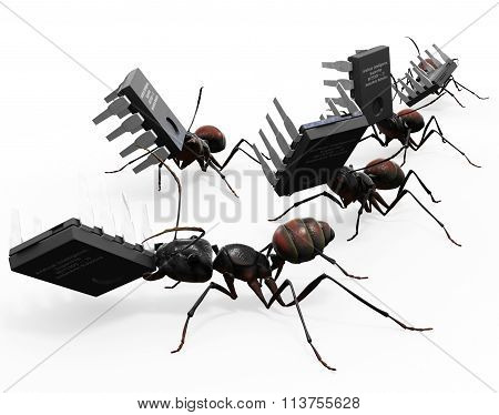 Ants Carrying Microchips