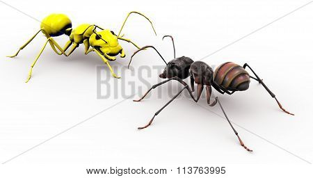 Ant Talking To Yellow Happy Face Ant