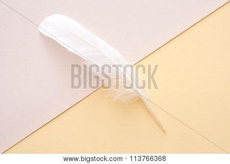White Feather On Yellow Paper Background