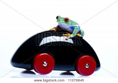 Green Frog driving!
