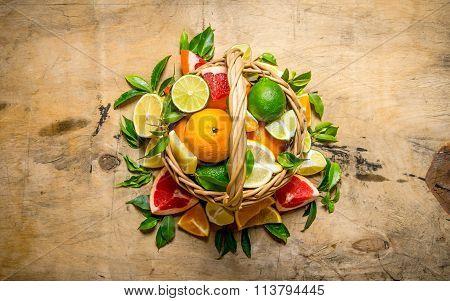 A Basket Full Of Citrus Fruits - Grapefruit, Orange, Tangerine, Lemon, Lime  And Leaves.