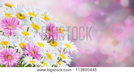 Background With Fragrant Flowers