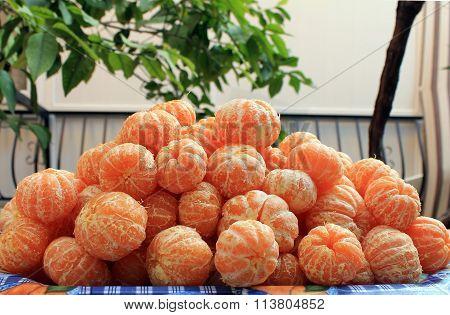 Cleaned tangerines mandarins raw material for jam