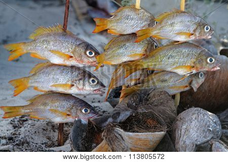 Cooking The Fishes On The Beach