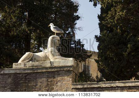 Sphinx Statue In Piazza Del Popolo In Rome