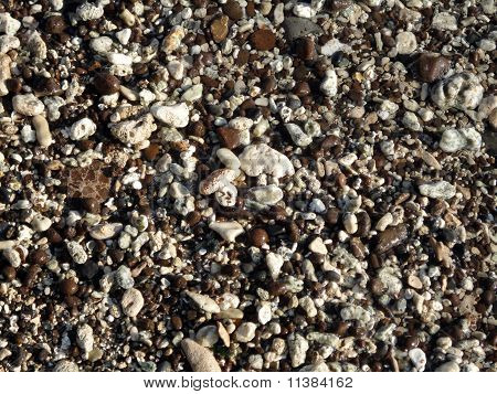 Wet Rocks, Pebbles, And Stones On A Beach On Oahu