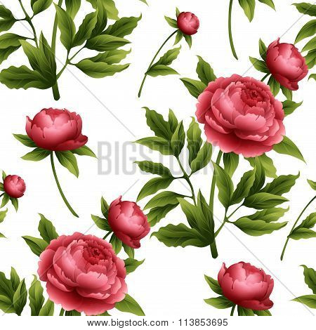Seamless pattern with peony flowers. Vector illustration