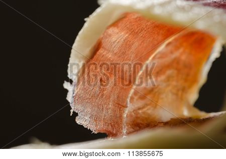 Iberian Spanish Ham, Bellota Ham.