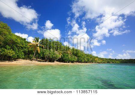 Exotic Beach In The Pointe Borgnese Natural Site, Near Marin, Martinique, Caribbean