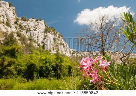 Cavagrande Valley, Sicily