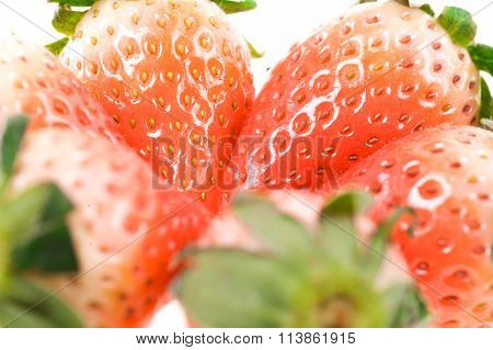 Half-ripe Strawberries With Leaves
