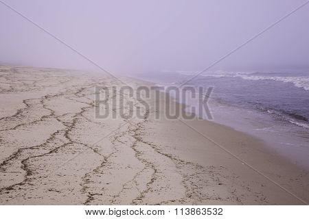 Misty beach on Cape Cod