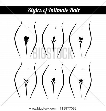scheme of hair removal bikini zone