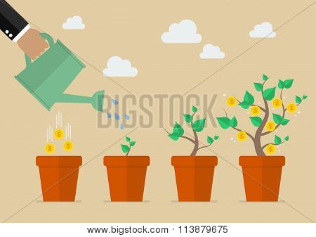 Hand With Can Watering Money Tree