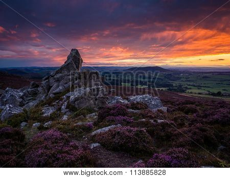 rocks and heather, Corndon hill from the Stiperstones, Shropshire at sunset