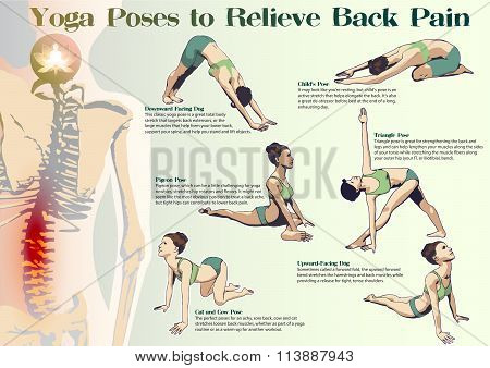 Yoga Poses To Relieve Back Pain poster