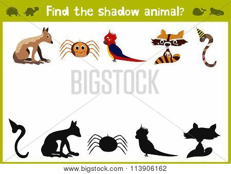 Cartoon Vector Illustration Of Education Shadow Matching Game For Preschool Children Find The Five C