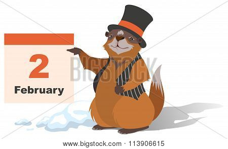 Happy Groundhog Day. Marmot holding February 2