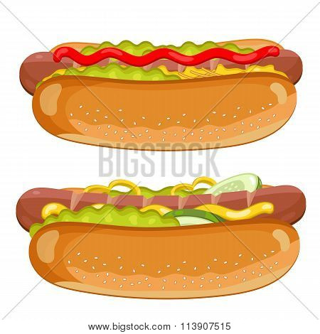 Hot Dog on white background.