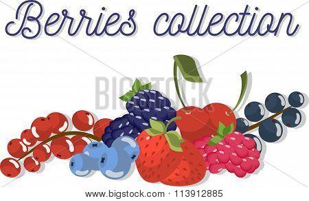 Set of beautiful flat vector berries