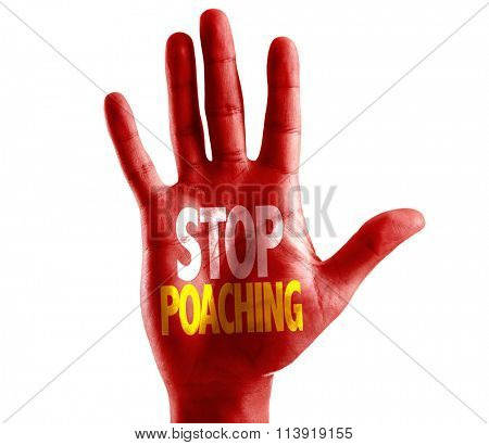 Stop Poaching written on hand isolated on white background