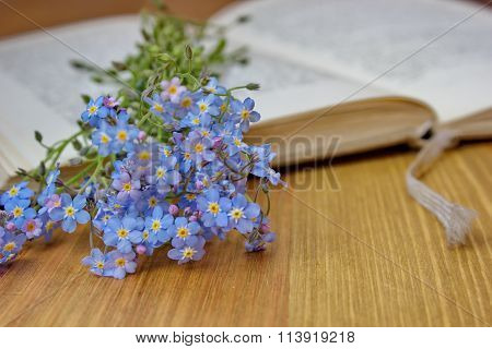 forget me nots lying on the open book
