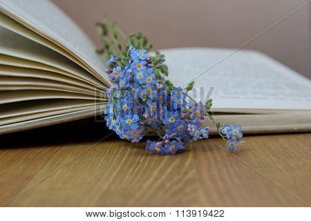 open book with forget me nots