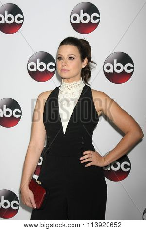 LOS ANGELES - JAN 9:  Katie Lowes at the Disney ABC TV 2016 TCA Party at the The Langham Huntington Hotel on January 9, 2016 in Pasadena, CA