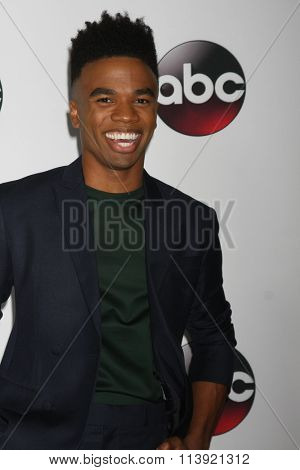 LOS ANGELES - JAN 9:  Luke Youngblood at the Disney ABC TV 2016 TCA Party at the The Langham Huntington Hotel on January 9, 2016 in Pasadena, CA